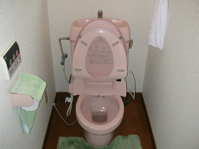 1階のトイレもハイター中〜