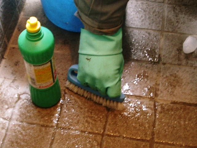 サンポールで玄関タイル洗浄