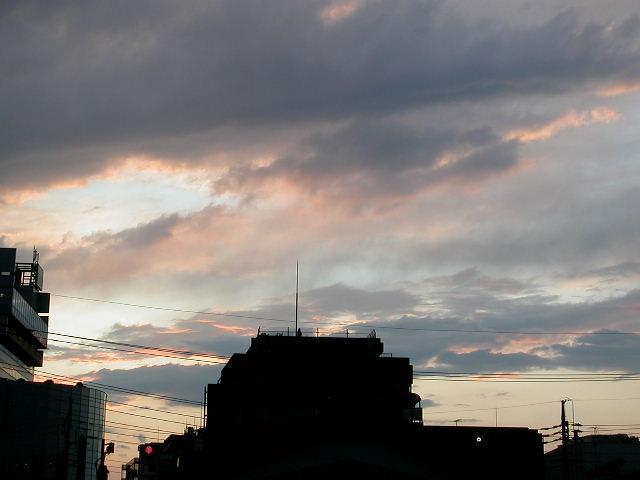 夕日が綺麗でした