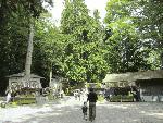 塩尻市弥彦神社の秋の祭り